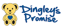 Visit The Dingley's Promise website