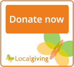 Donate to More Arts at Localgiving.org